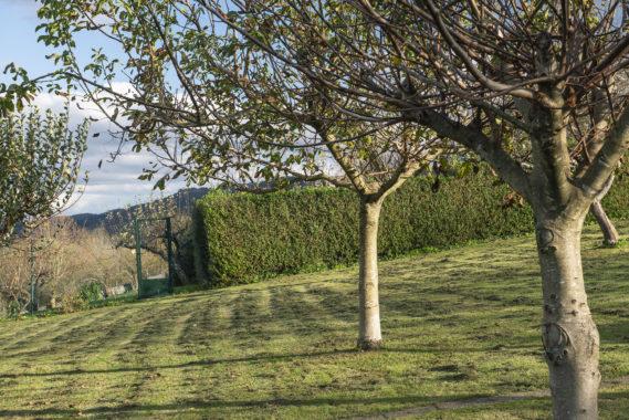 Vendo villa con tierras ref25-39